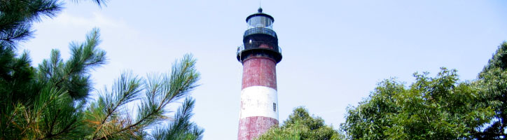 An Interesting View of Assateague Light